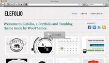 Most Popular Woo Themes